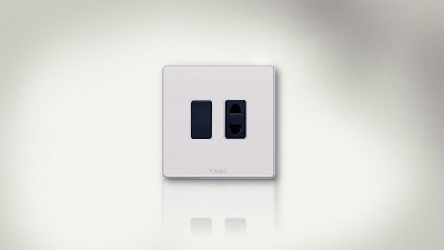 1 switch + 1 socket